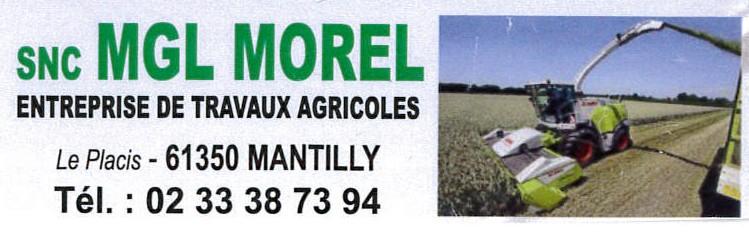 morel-2